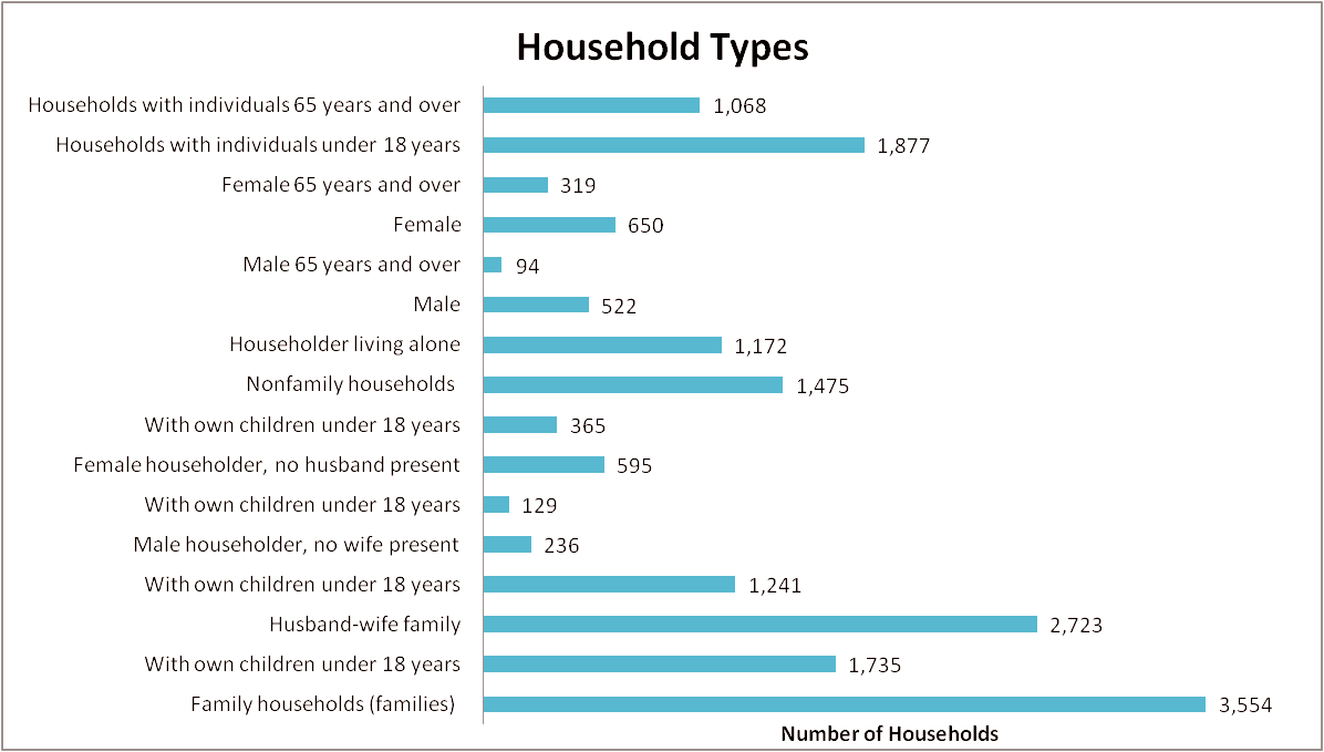 Household by type