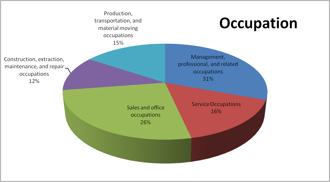 Occupation Pie